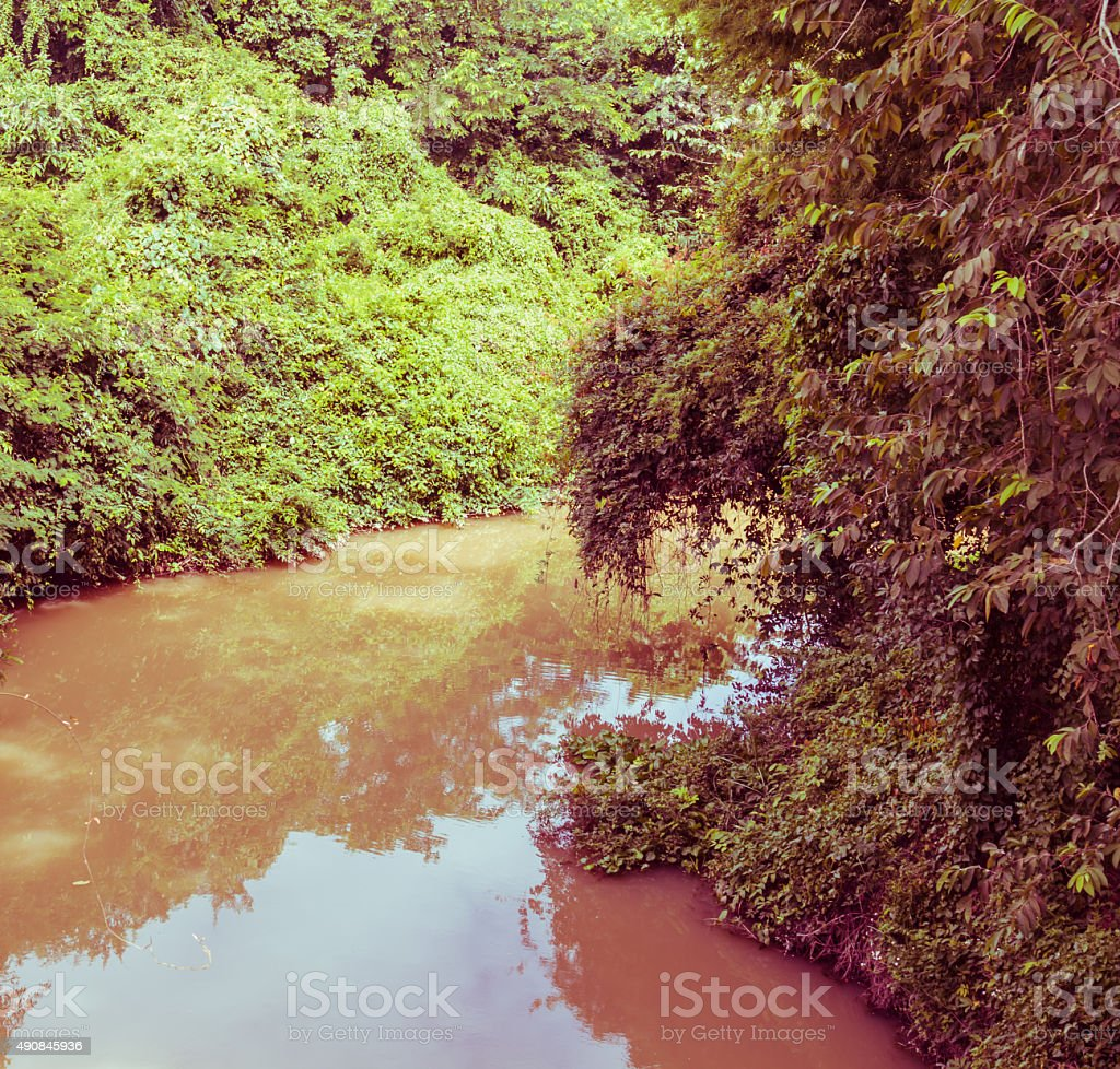 the rivulet in the jungle, vintage toning stock photo