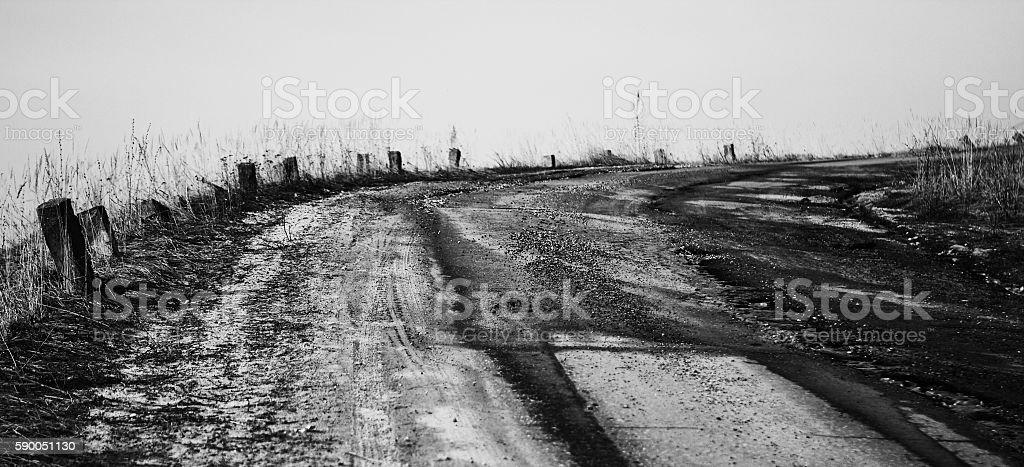 The road. stock photo