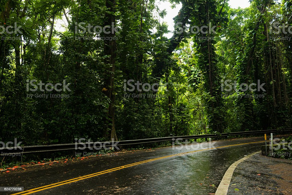 The road to Hana on Maui, Hawaii stock photo