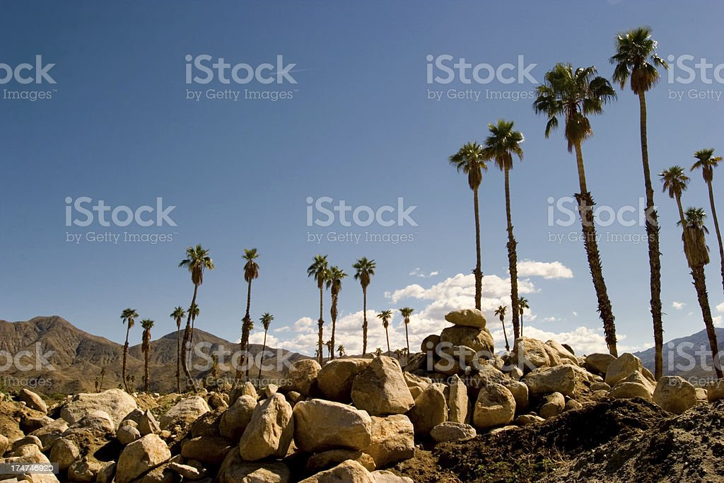 The Rocky Palm Springs stock photo