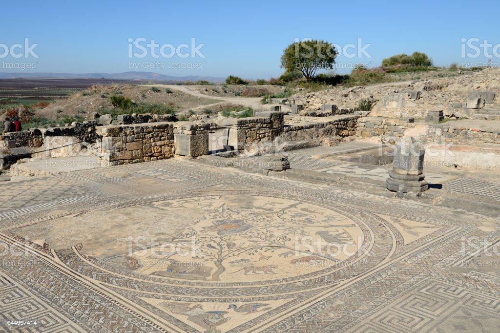 the Roman city Volubilis stock photo