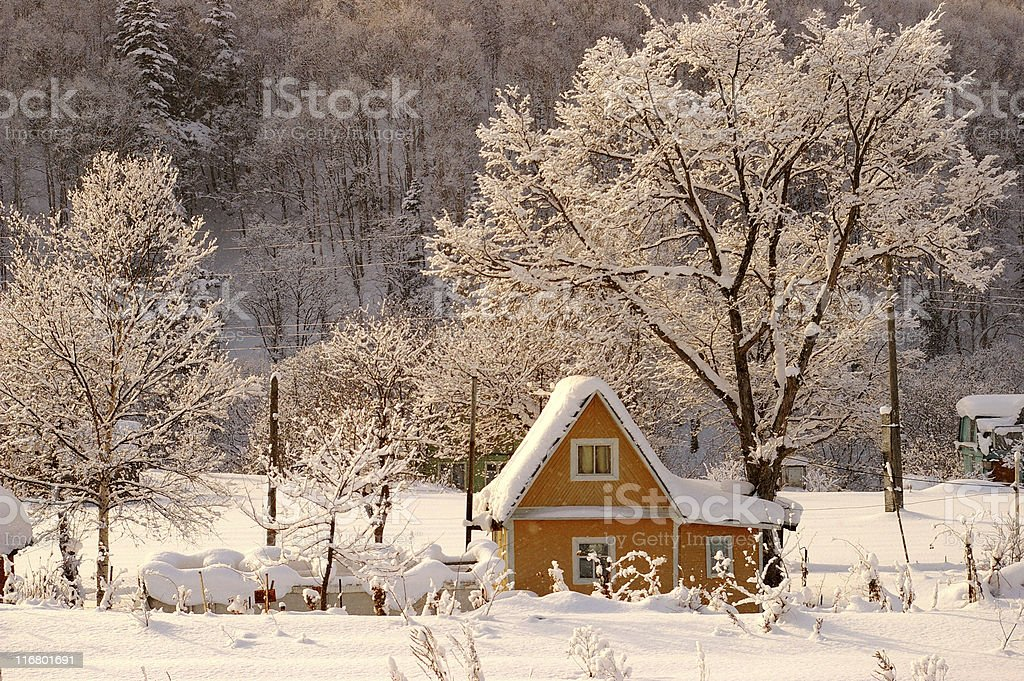 The Rose light winter morning. royalty-free stock photo