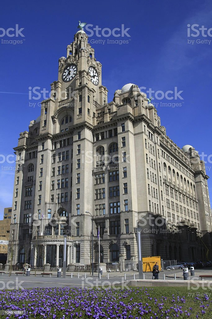 The Royal Liver Building in Liverpool, England stock photo
