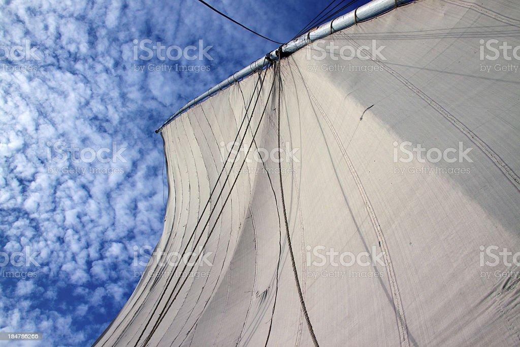 The sail stock photo