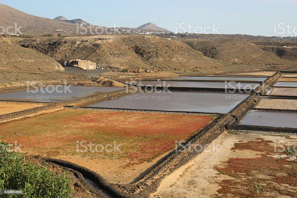 The Salinas of Janubio, Southwest Lanzarote. stock photo