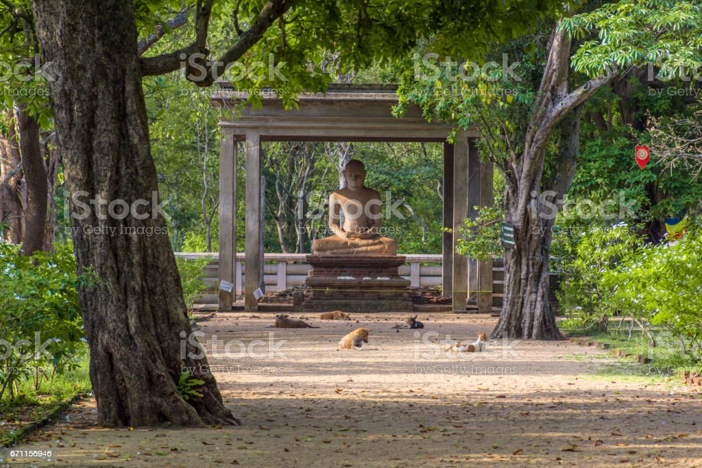 The Samadhi Statue Anuradhapura, Sri Lanka. stock photo
