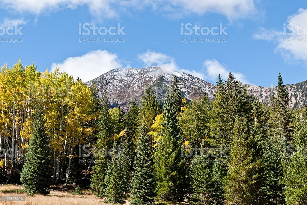 Humphreys Peak from the Inner Basin stock photo