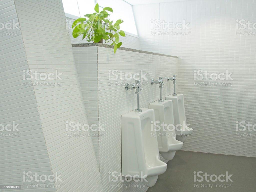 The sanitary ware for men stock photo