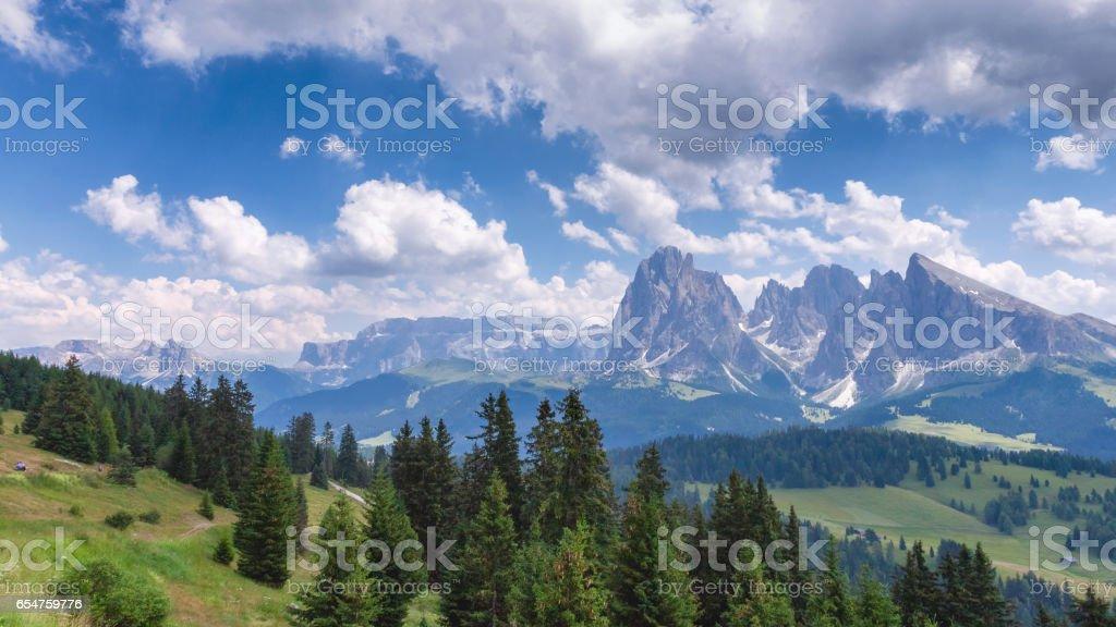 The Saslonch, Sassolungo, Langkofe. Dolomites, Val Gardena, South Tyrol, Italy stock photo