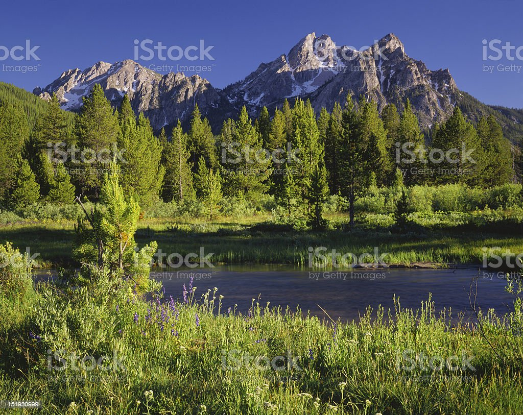 The Sawtooth Mountain Range, Stanley Idaho (P) stock photo