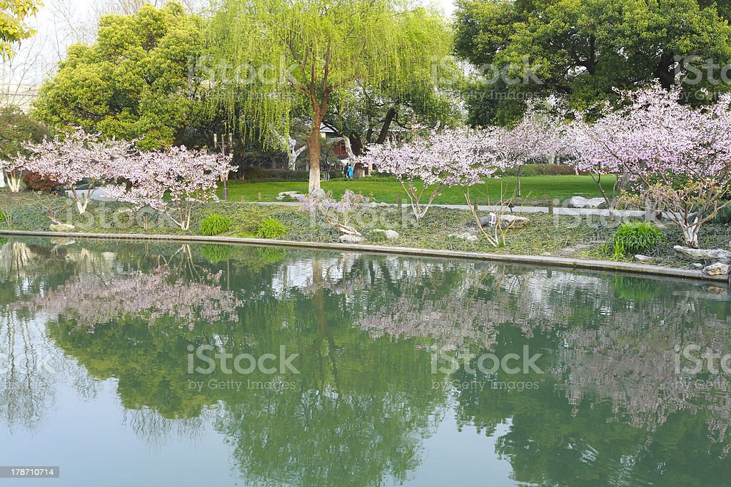 The scene in West Lake. royalty-free stock photo