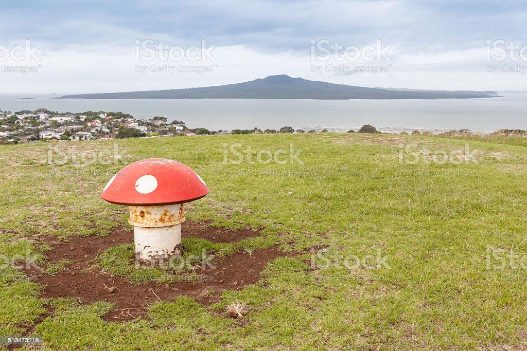 The scenic view Rangitoto Island from Victoria hill, Auckland. stock photo