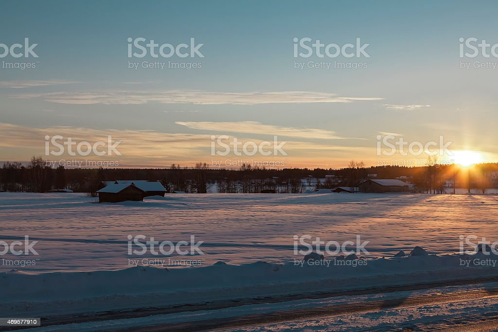 The search for the sun royalty-free stock photo