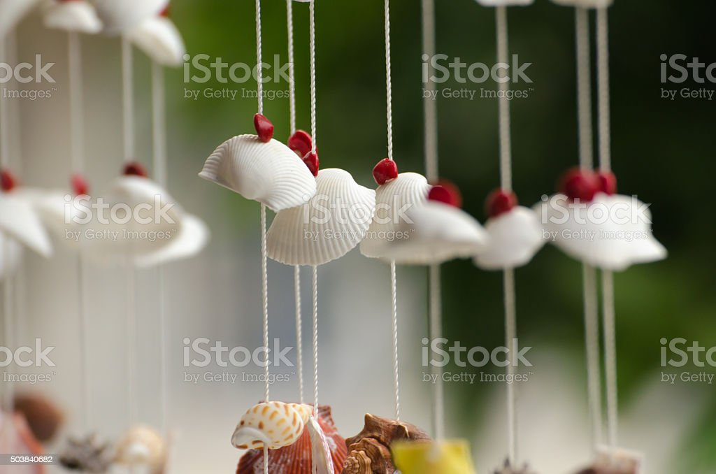 The seashells mobiles with colorful and the green background stock photo