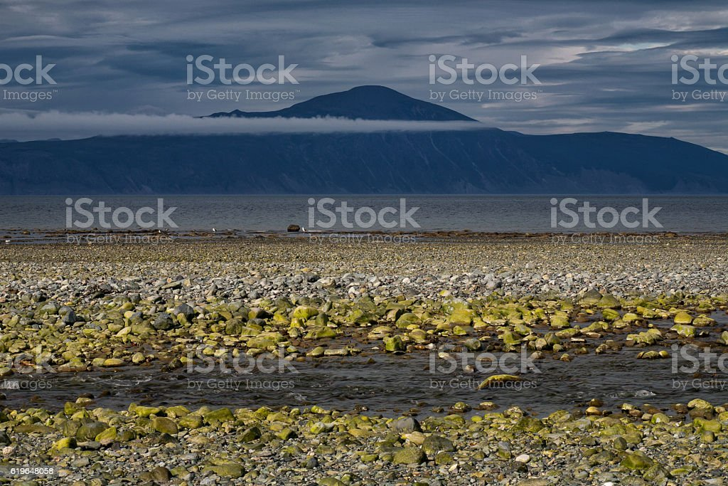 The seashore at low tide. stock photo