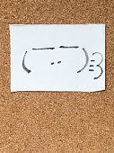 The series of Japanese emoticons called Kaomoji, smug