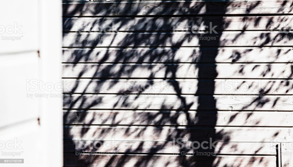 The shadow of a tree is on the wall of the house - abstraction stock photo