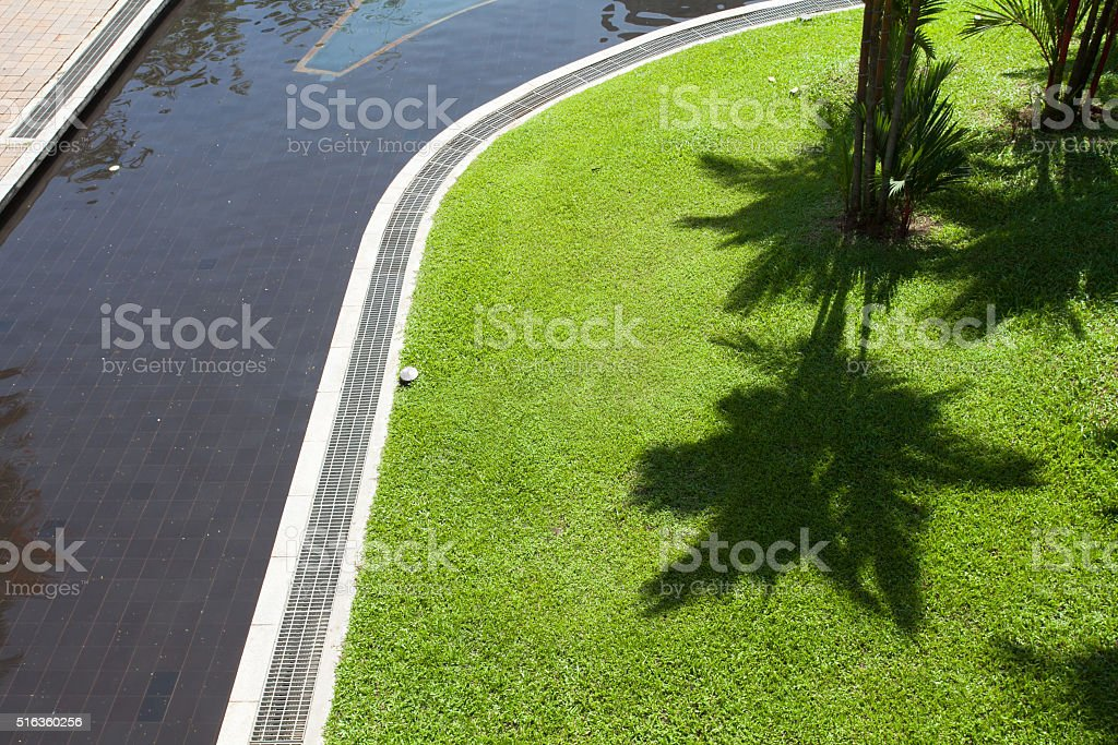The shadow of the palms on the green grass. stock photo