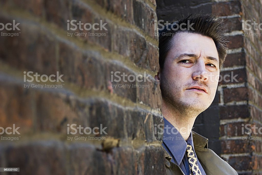 The Shadow royalty-free stock photo