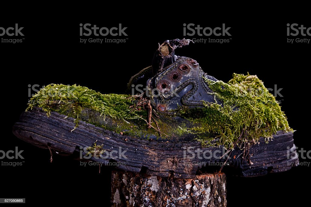 The Shoe of Forest Man stock photo
