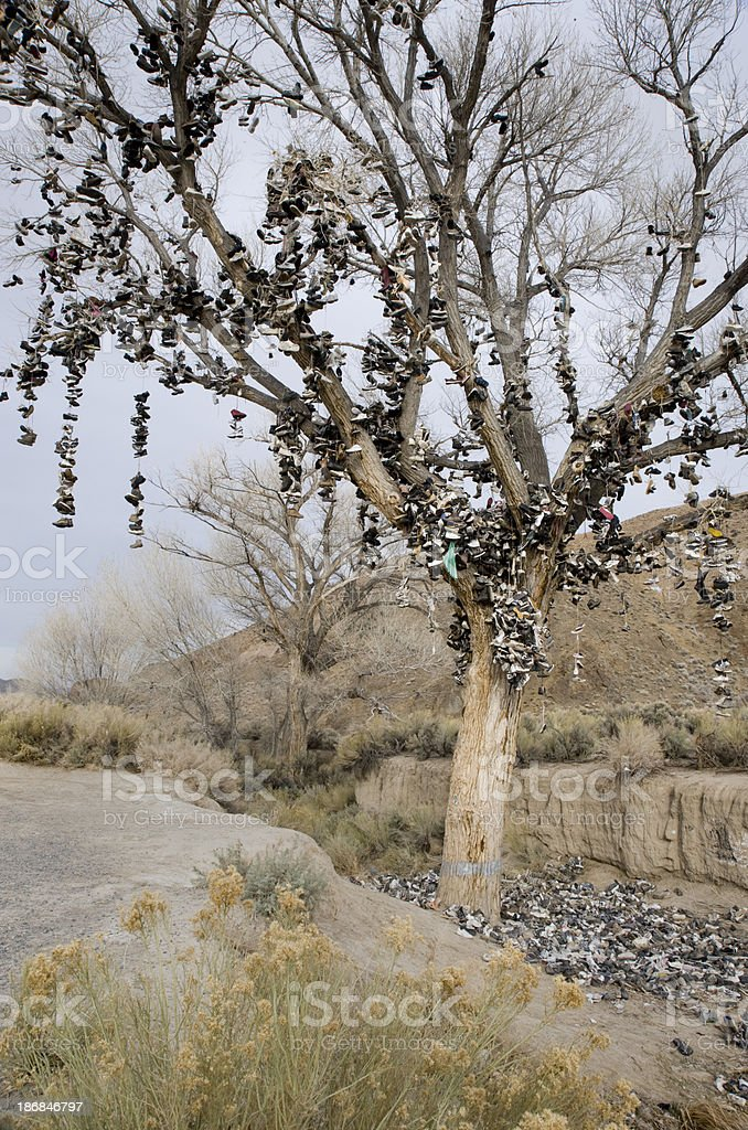The Shoe Tree, Route 50, Nevada stock photo
