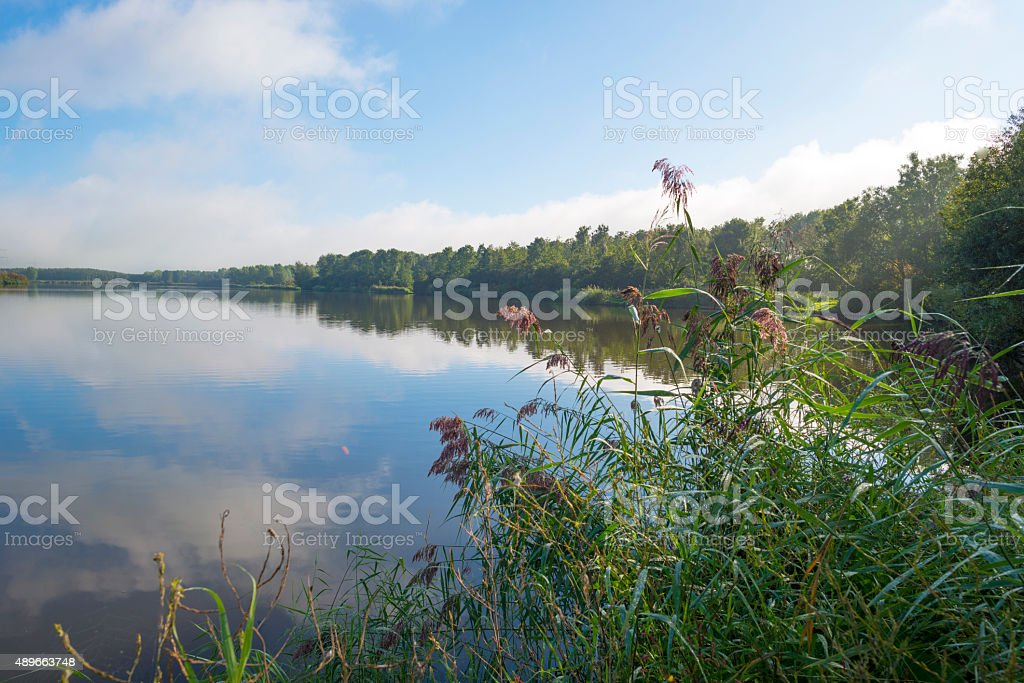 The shore of a lake below a blue cloudy sky stock photo