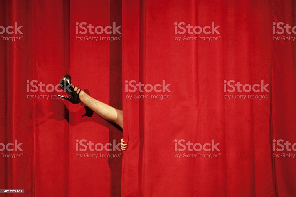 The show stock photo
