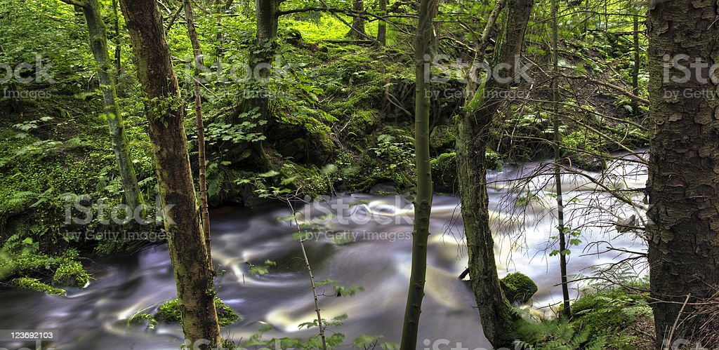 The Silver Water Glen royalty-free stock photo