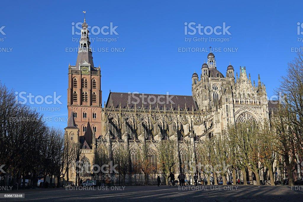 The Sint-Janskathedraal in Den Bosch, Holland stock photo