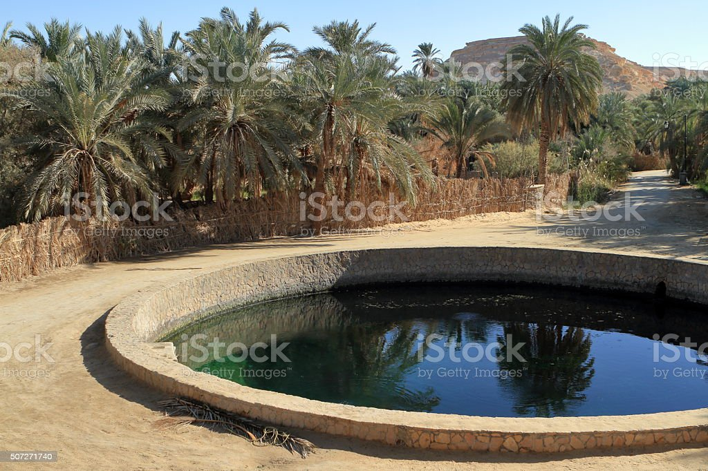 The Siwa Oasis in the Sahara in Egypt stock photo