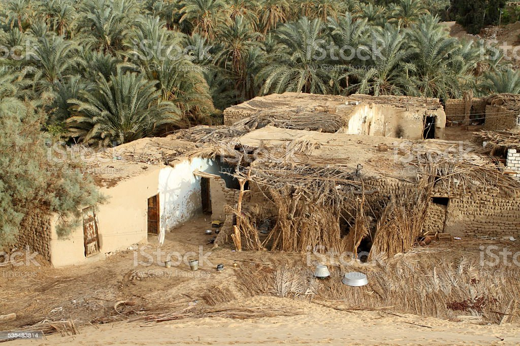 The Siwa Oasis in the Sahara of Egypt stock photo