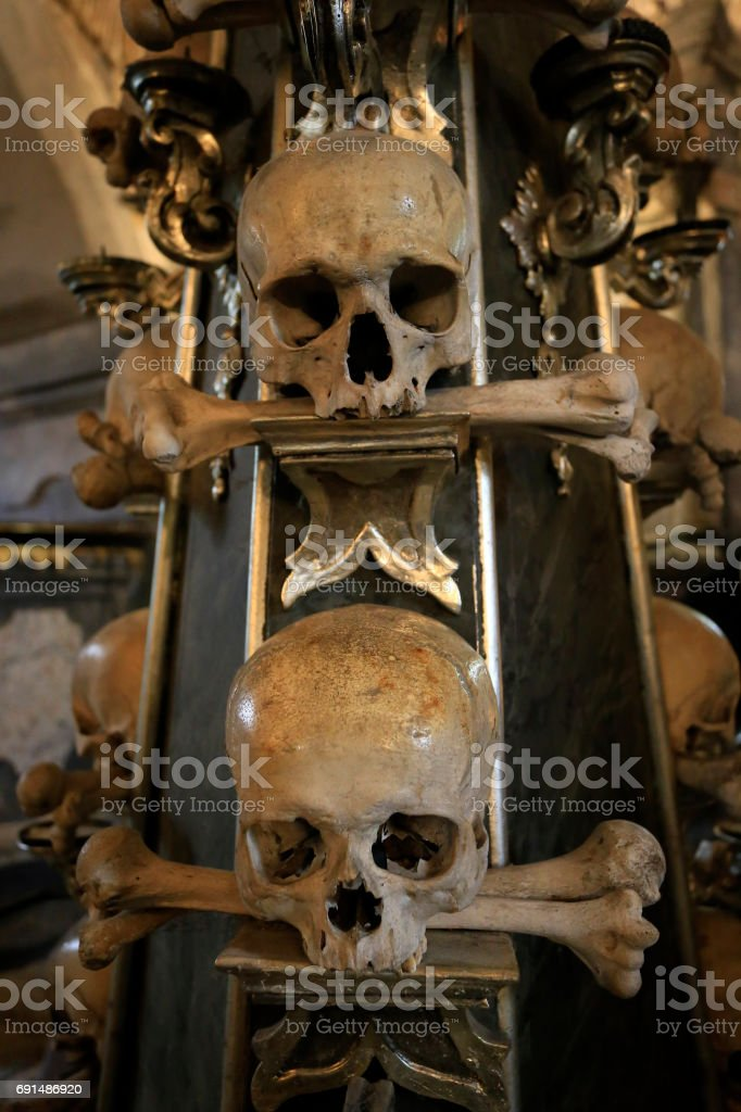 The Skull Bones stock photo