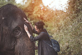 The smiling girl embraces an elephant