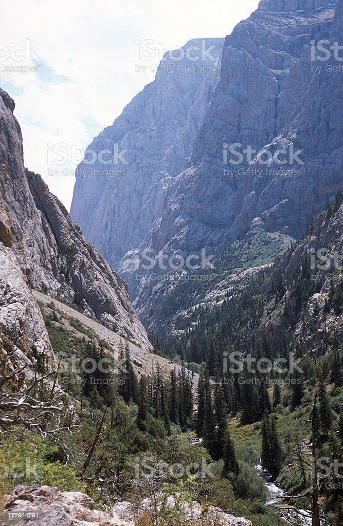 The Snow Leopard Gorge stock photo
