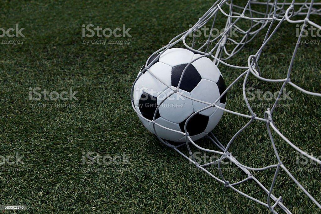 the soccer ball stock photo