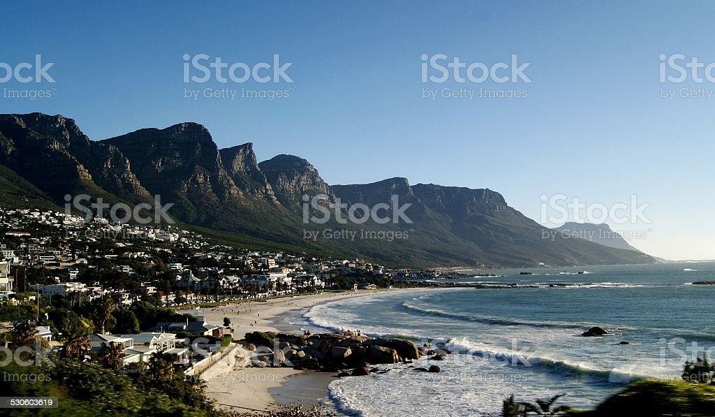The solar ocean coast with palm trees stock photo