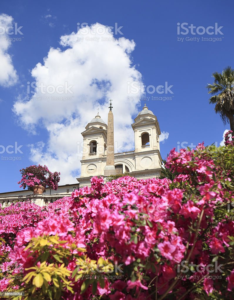 The Spanish Steps in Rome with Azalea flowers, Italy stock photo