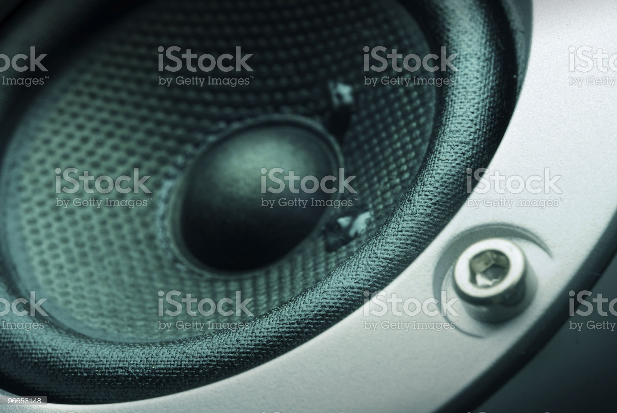 The Speaker royalty-free stock photo