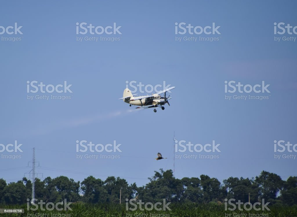 The spraying of fertilizers and pesticides on the field with the aircraft. stock photo