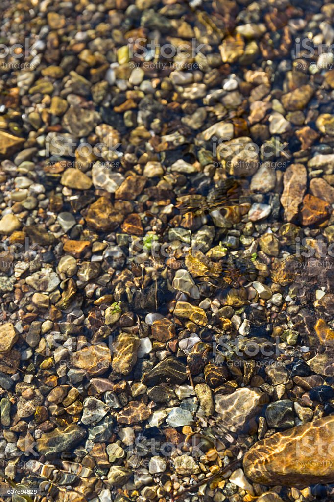 The spring stream stock photo