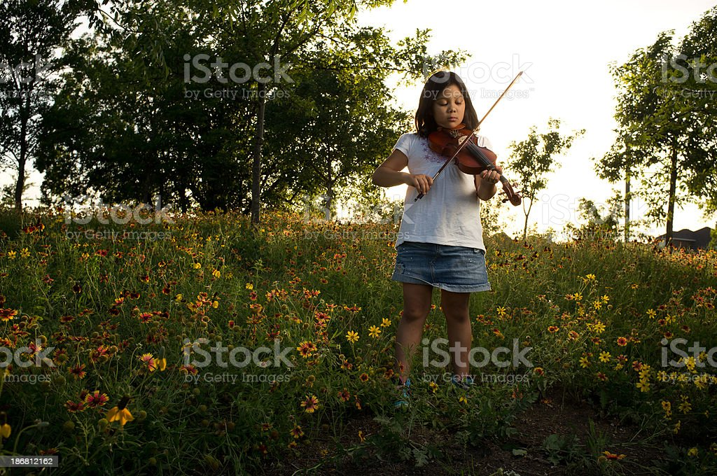The spring violinist stock photo