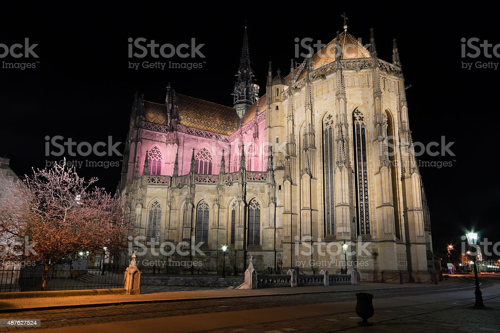 The St. Elisabeth Cathedral at night stock photo