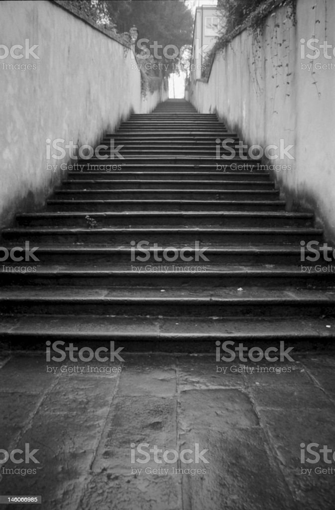 The stairs royalty-free stock photo