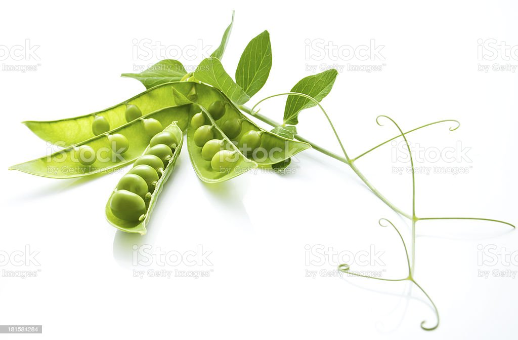 The still life from  green peas stock photo