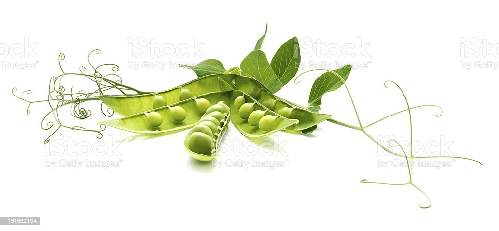 The still life of green peas royalty-free stock photo