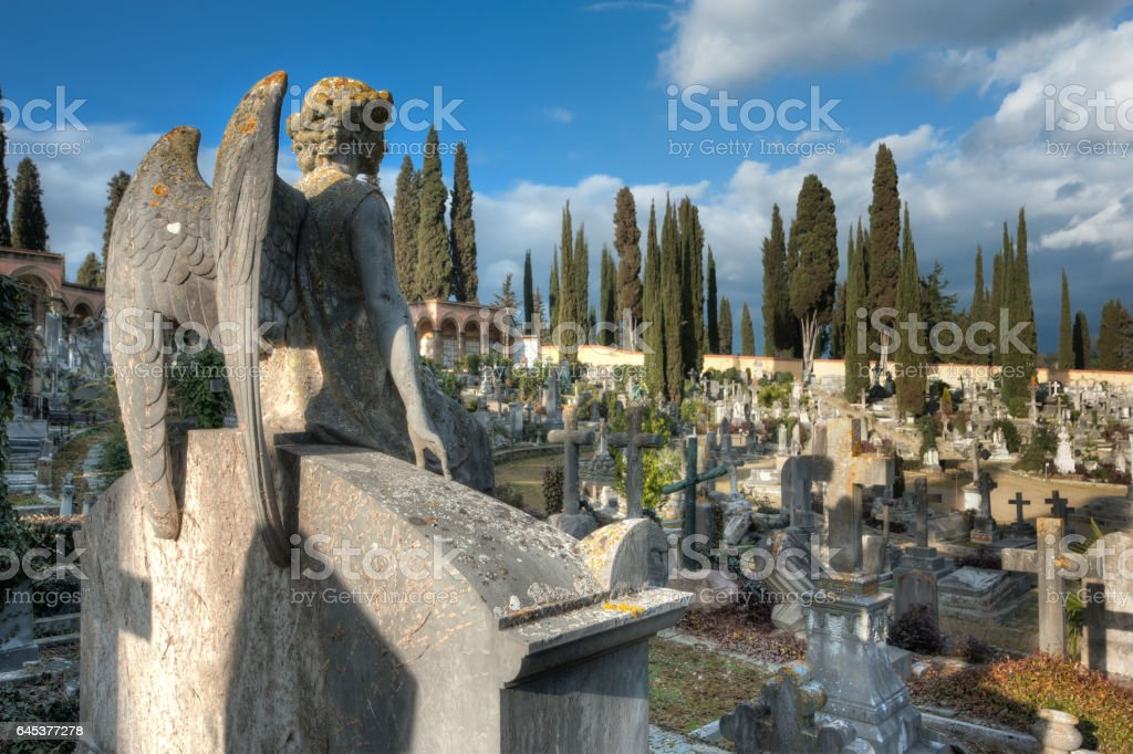 The stone angel sitting on the tomb looks an expanse of crosses stock photo