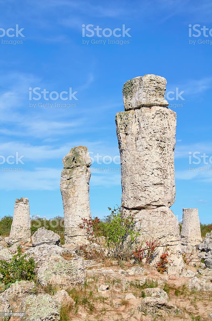 The Stone Desert stock photo