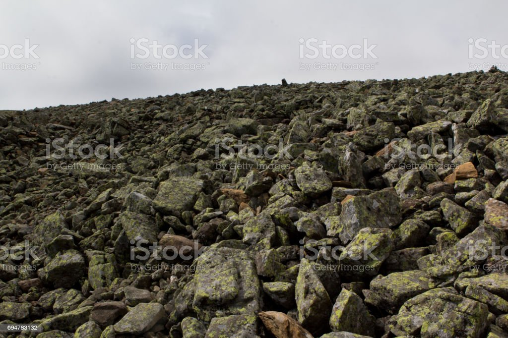 The stone river. Kurumnik - a gray stone placer Northern Urals. Russia. A lot of stones. stock photo