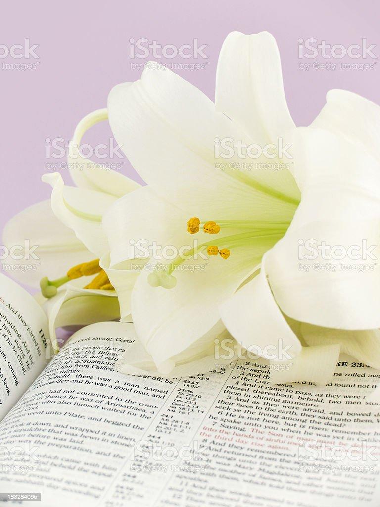 The Story of Easter (KJV) royalty-free stock photo
