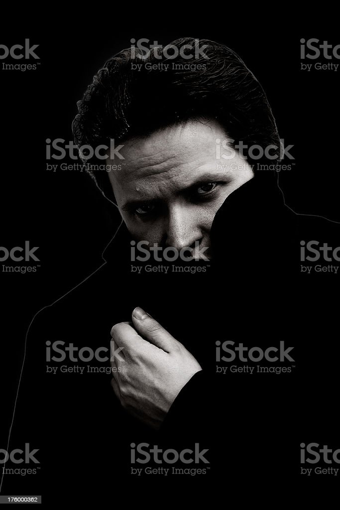 The Stranger royalty-free stock photo